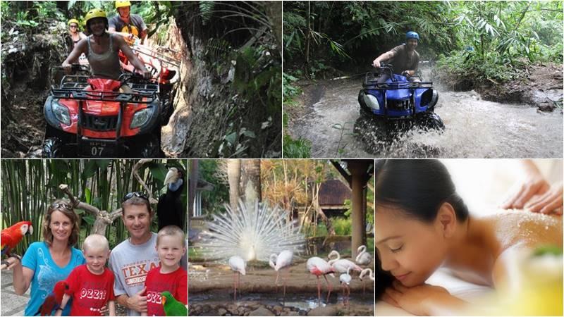 Bali Atv Ride - Bali Bird Park tour