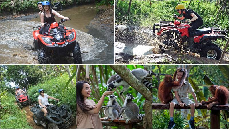 Bali ATV Ride + Bali Zoo