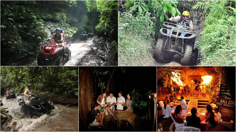 Bali ATV Ride + Night Zoo tour