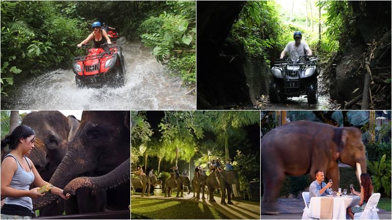 Bali ATV Ride + Safari Under the Stars