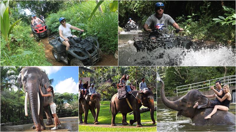 Bali ATV Ride + Bathing Elephant