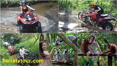 The Top Bali ATV Combination Packages 13
